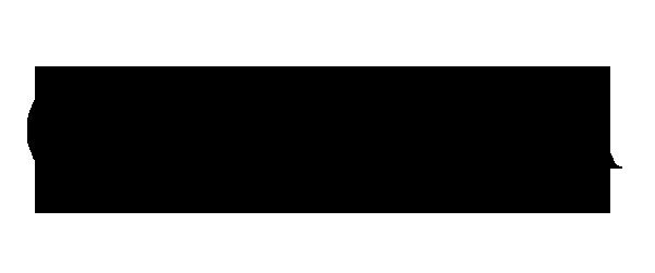 carizza logo new